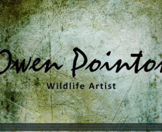 Owen Pointon Video Title